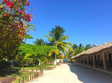 El Paraíso Tulum